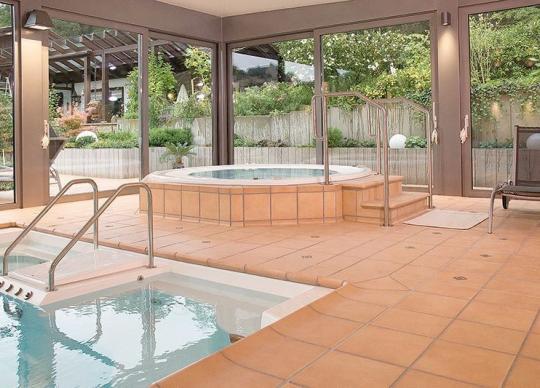 23-Oblíbená dlažba pro okolí bazénů - Aldonza, cena od 950 Kč/m2